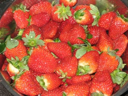 erdbeeren-fur-erdbeermarmelade-mit-prosecco.JPG