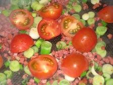 tomaten-hinein.JPG
