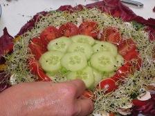 tomaten-und-zwiebelkeime.JPG