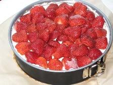 erdbeeren-drauflegen.JPG