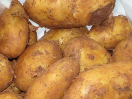 fruhkartoffeln-ein-gedicht.JPG