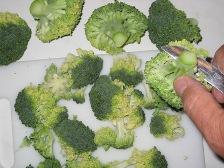 broccoli-in-roschen-schneiden.JPG